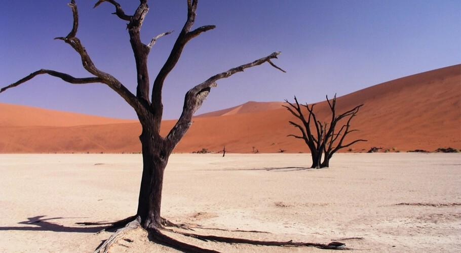 Het beste van Namibië