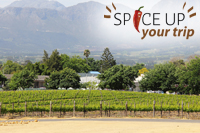 Wijntour Stellenbosch